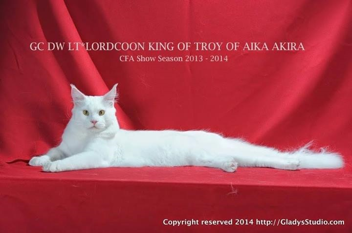 King of Troy